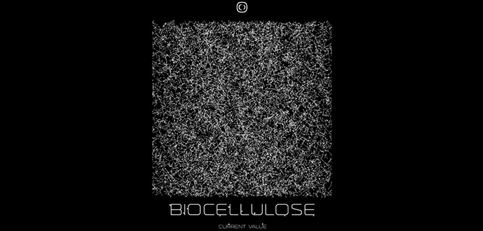 Current Value - Biocellulose LP